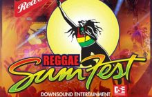 Stonebwoy to perform officially at Reggae Sumfest 2018